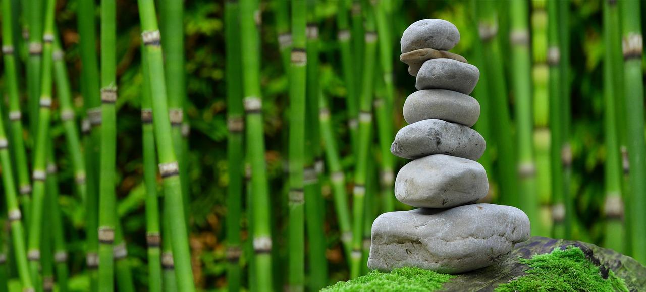 Neue Qi Gong-Kurse (Einsteiger/ Fortgeschrittene)